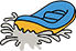 White Water Rafting: Zoar/Crab Apple