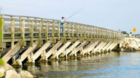 Mass fishing fishing in massachusetts massachusetts for Fishing charters falmouth ma