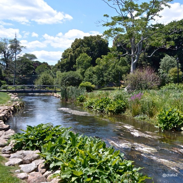 Brewster Gardens in Plymouth, MA by @chalis2