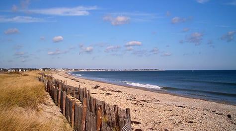 A Bark On The Beach-New England