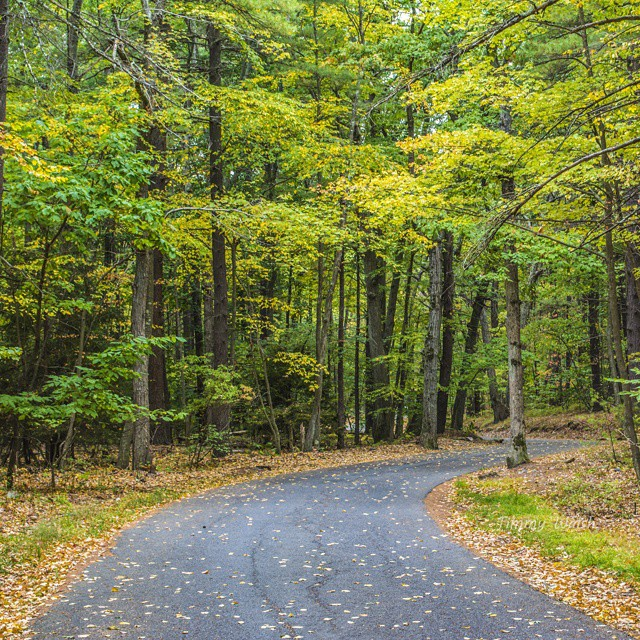 Summit Road at Blue Hills Reservation in Milton, MA