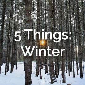5thingswinter_story